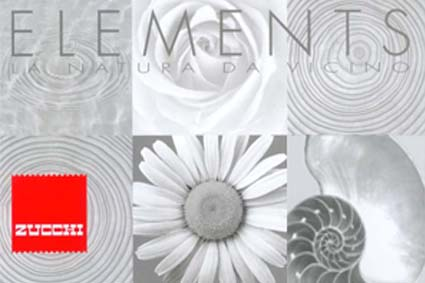 Research trend for Zucchi collection elements